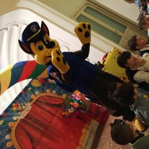 Noleggio mascotte Paw patrol per feste di compleanno firenze